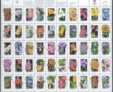 US Stamp #2647/2696 MNH Wildflowers Full Sheet of 50