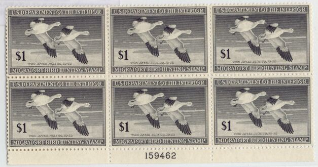 US Scott #RW14 MNH Super Snow Geese in Flight – Plate Block of 6
