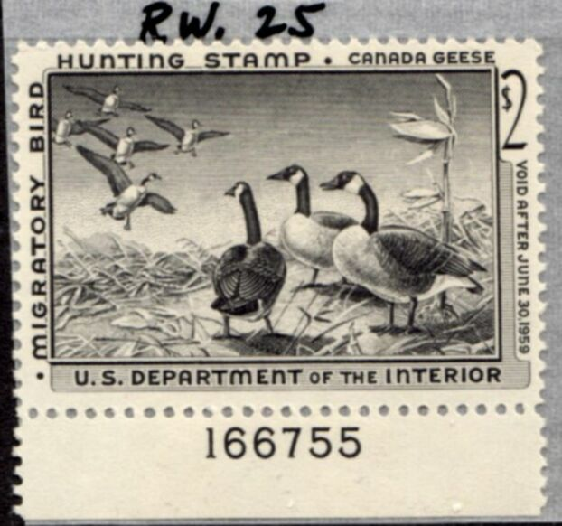 US Scott #RW25 MNH – Gaggle of Canada Geese Plate Number Single