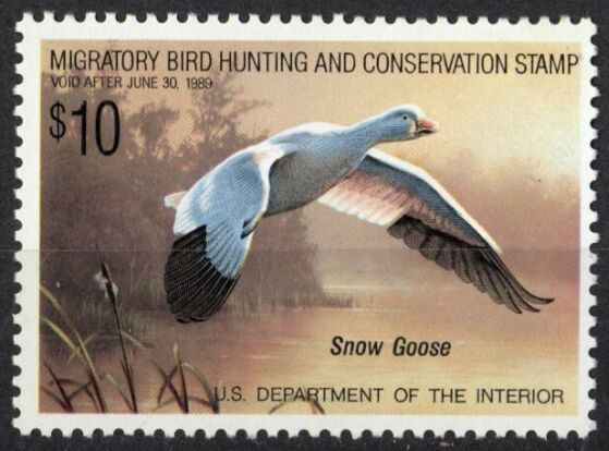US Scott #RW55 MNH – SUPER Snow Goose in Flight