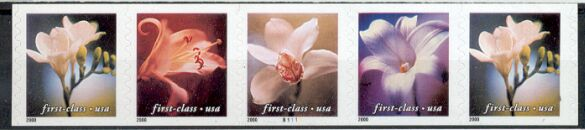 US Stamp #3465a MNH – Flowers Non-Den. Coil PS5 #B1111